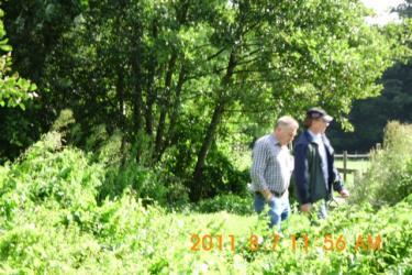 Steinhude_07-08-2011_016.jpeg